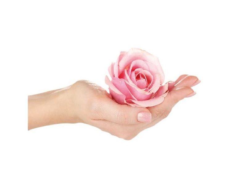 Ätherisches Öl Rose » 3,90€ » SeifenPlanet-Onlineshop
