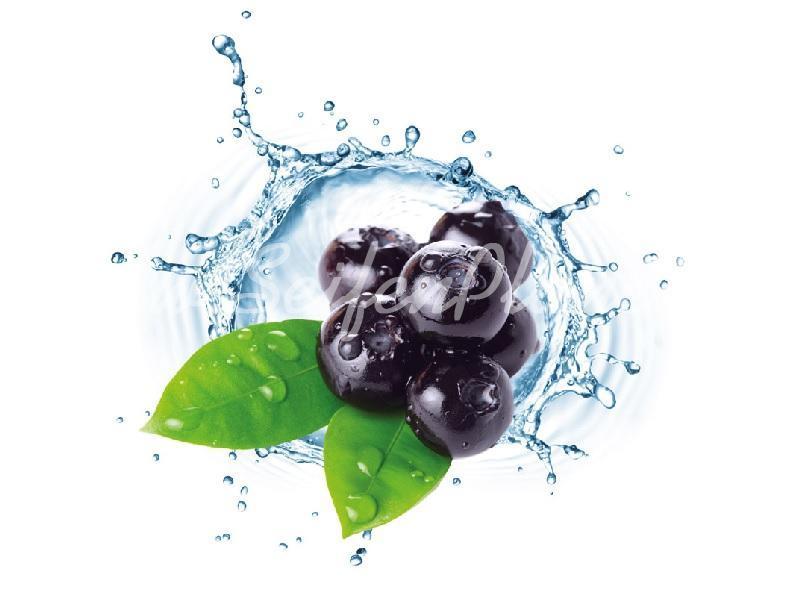 Seifenduft-Öl Blue Berry » 4,95€ » SeifenPlanet-Onlineshop