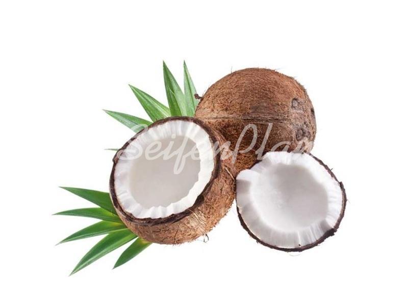 Seifenduft-Öl Kokosmilch » 4,95€ » SeifenPlanet-Onlineshop