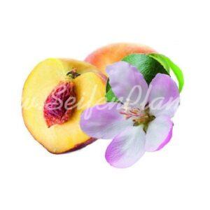 Seifenduft-Öl Pfirsichblüte