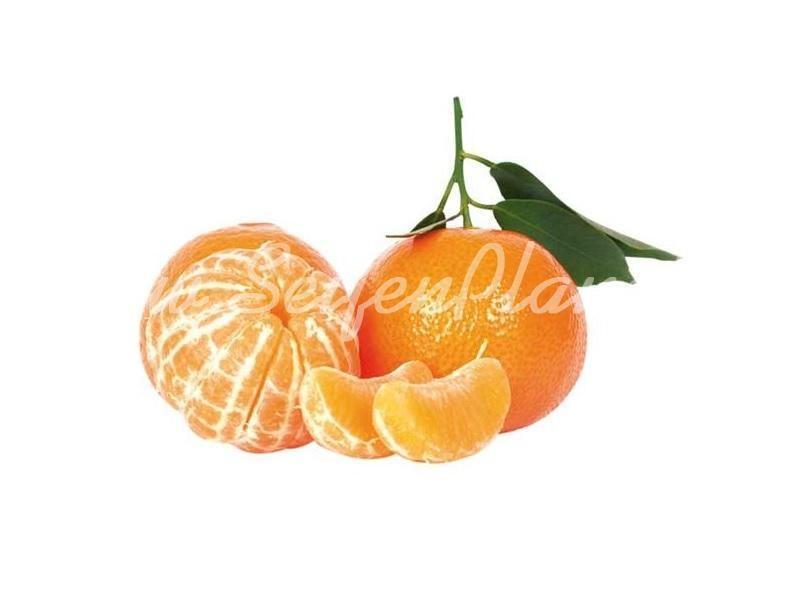 Mandarinenöl » 3,54€ » SeifenPlanet-Onlineshop
