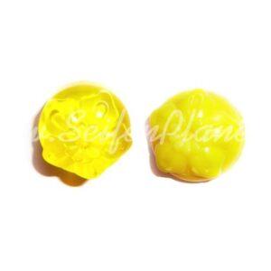 Lebensmittelfarbe Gelb 10ml